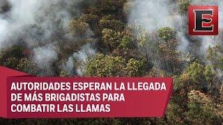 Incendio ha consumido 250 hectáreas en el Bosque La Primavera de Jalisco