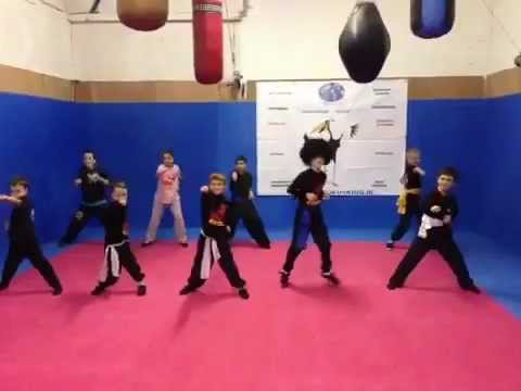 Kung Fu 4 Kids do their Harlem Shake