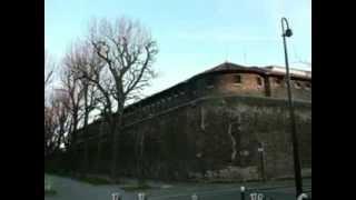 Le mur de la prison  (Cover Ced 2013)  De Yves Duteil