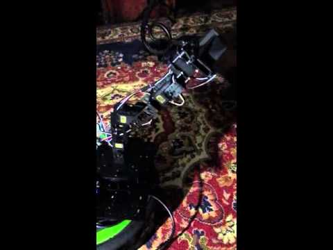 Simple motion of snapper robotic arm