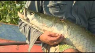 Extreme fishing with Robson Green  funny moments in season 3