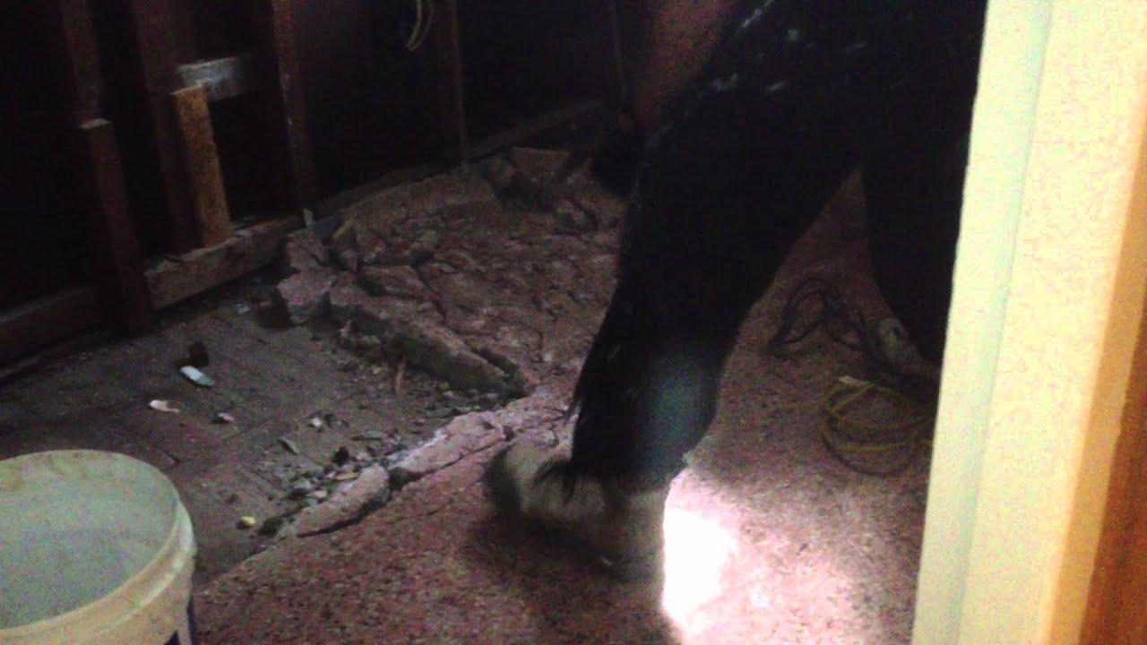 Digging Up The World S Ugliest Terrazzo Floor Good