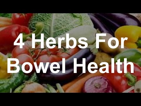 4 Herbs For Bowel Health - Best Foods For Bowel Health