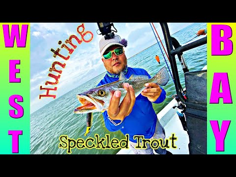 Hunting Speckled Trout In West Bay | Drift Fishing Galveston Texas
