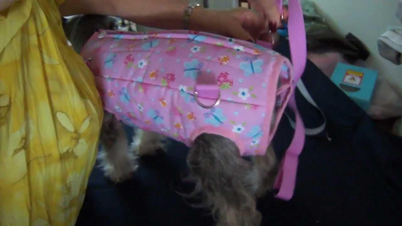 cargador para perros razas pequeñas