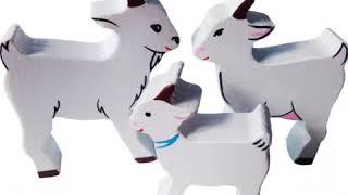 Семьи домашних животных