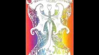 11 Iron Buttefly - Iron Butterfly Theme (RARE Bootleg 1967)