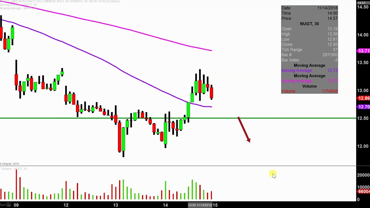 Direxion Daily Gold Miners Bull 3x Etf