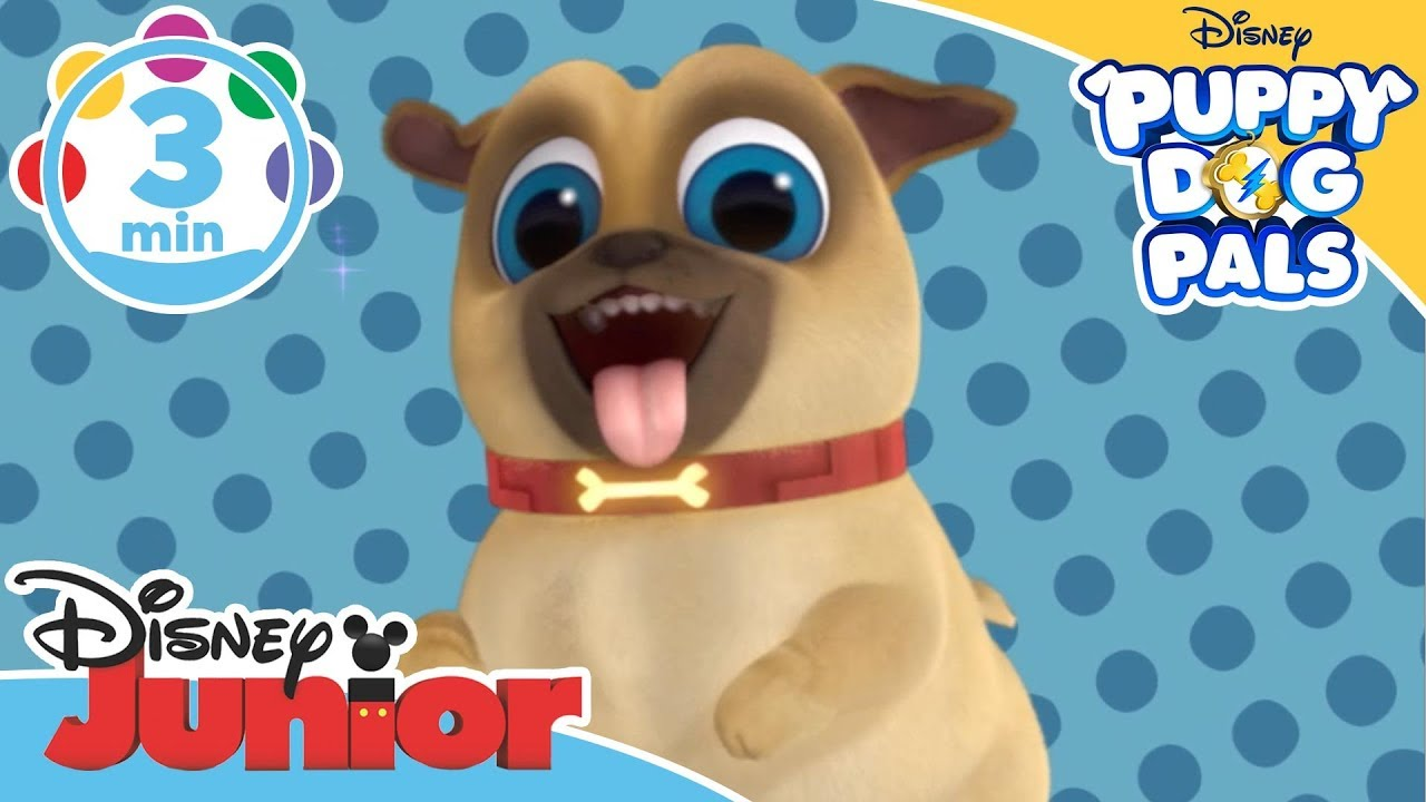 Puppy Dog Pals The Bone Song Learn To Count Game Disney Junior