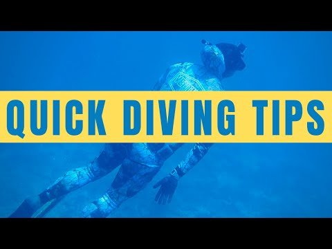 Spearfishing Tips: How To Become A Better Freediver