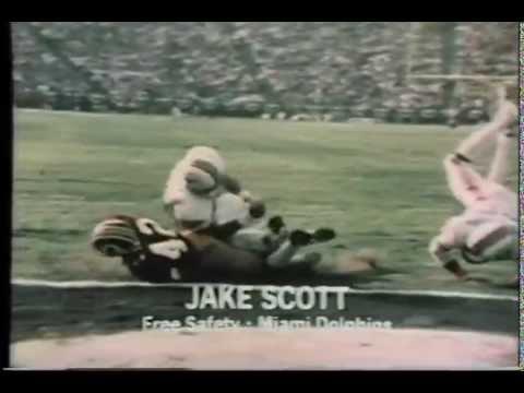 Jake Scott Dodge Van H 264