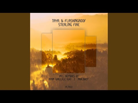 Taya & Flashingroof - Stealing Fire mp3 indir