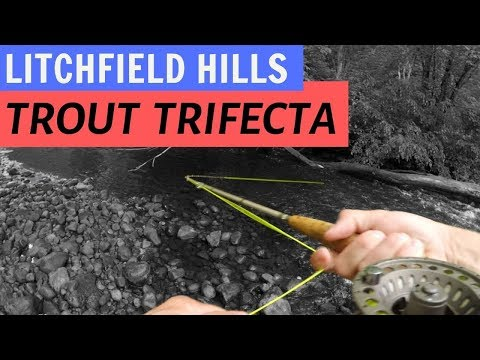 Connecticut Trout Tour, Part III: Leadmine Brook (Trifecta!)