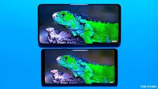 mate 20 x review