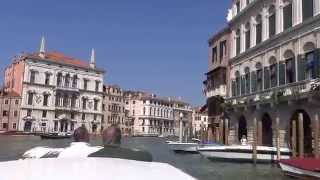 Venice Water Taxi to Rialto Bridge