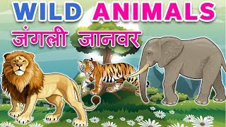 Animals name in hindi | Wild animals name in hindi | जंगली जानवर | janvaro ke naam | preschool learn