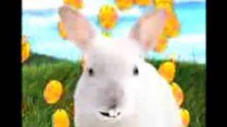 the easter bunny song.wmv