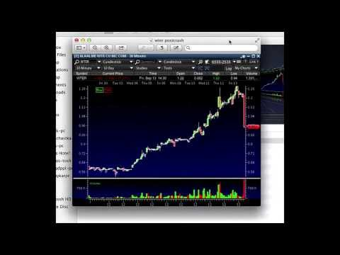 Tim Sykes & Students Short Sell A Penny Stock For 40% Profits