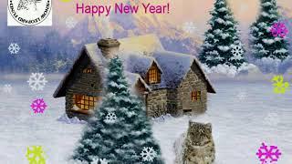 видео Новый год с Леопардом!