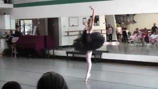 Black Swan Variation