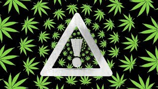 FLOSSTRADAMUS - ROLL UP