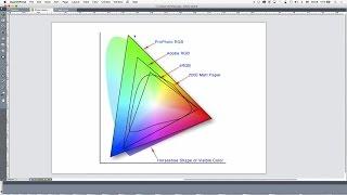 15 - DTP with QuarkXPress: Colour Workflow