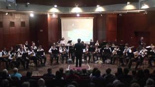 mandolin orchestra - beer sheva (israel)