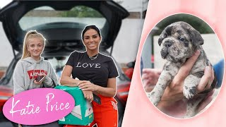 Katie Price: Princess Puppy Presents  Cute!