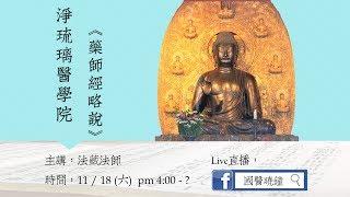 1061118藥師經略說與佛法問答  法藏法師