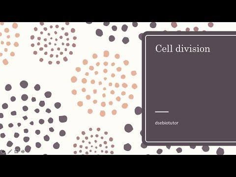 DSE Biology: Cell division