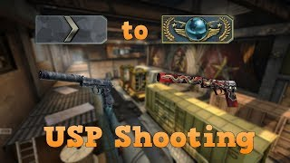 Silver 1 to Global Elite ★ USP shooting