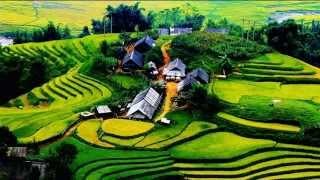 Hận Ly Hương (Việt Dzũng)