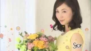 出演者:--- 篇 名:--- 商品名:春いちばん祭(3/12~14) 企業名:シ...