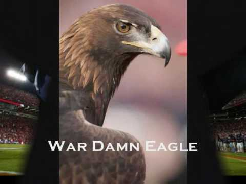 War Eagle! - The history of a Tradition at Auburn University