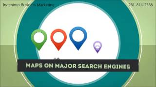 Ingenious Business Marketing Houston, Texas – Local Buzz Services
