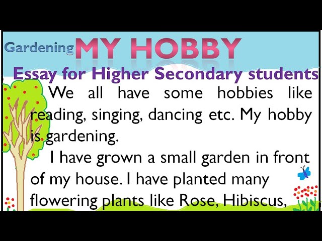 Hobby my Essay on