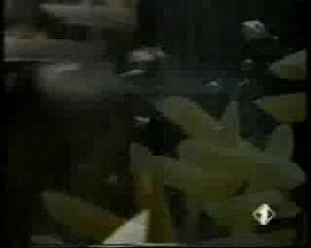 pubblicit barilla  viva il blu  anni 90