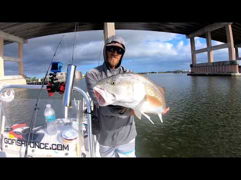 USING LIVEBAIT At The BRIDGE For REDFISH & TROUT In Port Orange - Saltwater Fishing In Florida
