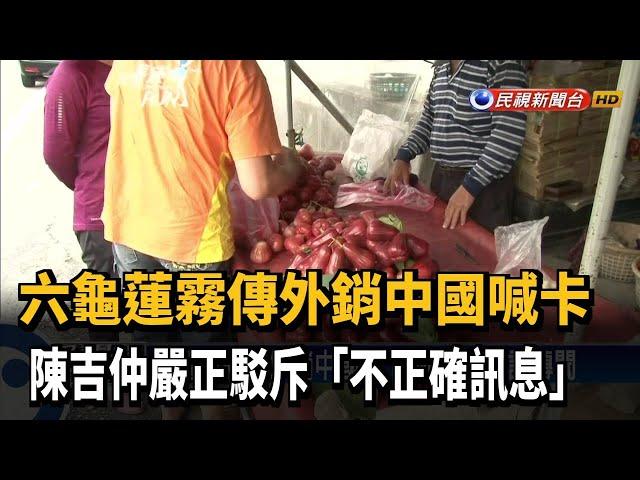 六龜蓮霧傳外銷中國喊卡 陳吉仲:不正確訊息-民視新聞