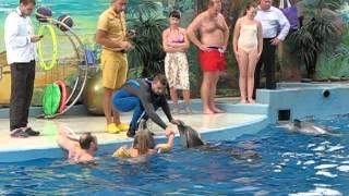 Сочи  дельфинарий, купание с дельфинами(, 2015-11-18T13:13:01.000Z)