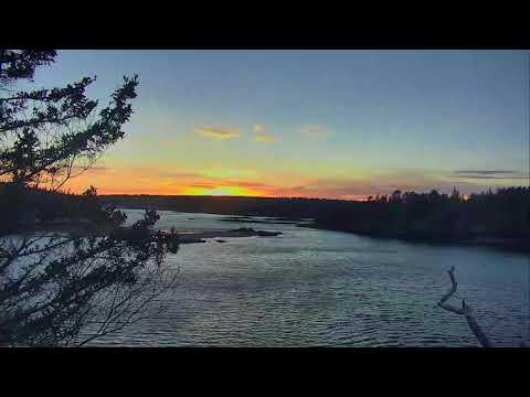 Audubon Osprey Nest Cam 03-16-2018 15:29:04 - 16:29:05