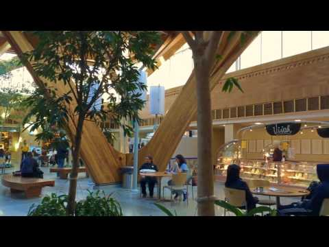 Internal Public Space: Credit Valley Hospital Mississauga / Royal Children's Hospital