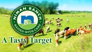 Niman Ranch, Natural Meat Maker, Is Attracting Buyer Interest