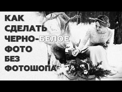 Как сделать фото черно-белым? Профессиональные способы