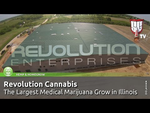 Largest Medical Marijuana Grow in Illinois - Revolution Cannabis, Tim McGraw - Smokers Guide TV USA