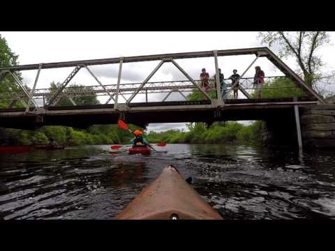 Kayak Bantam River Expedition with the kids and a beaver encounter