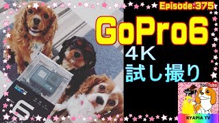 4K,フレームレート60,広角で試し撮りしてみました。 ↓ゴープロ6を...