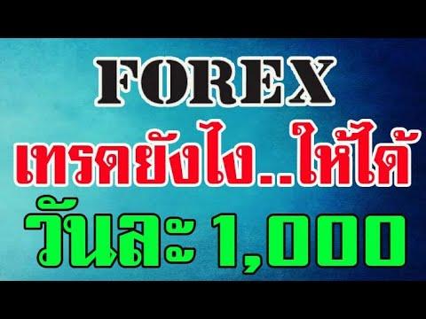 เทรดหุ้น-เทรดforex-ให้ได้วันละ-1000-ep.1