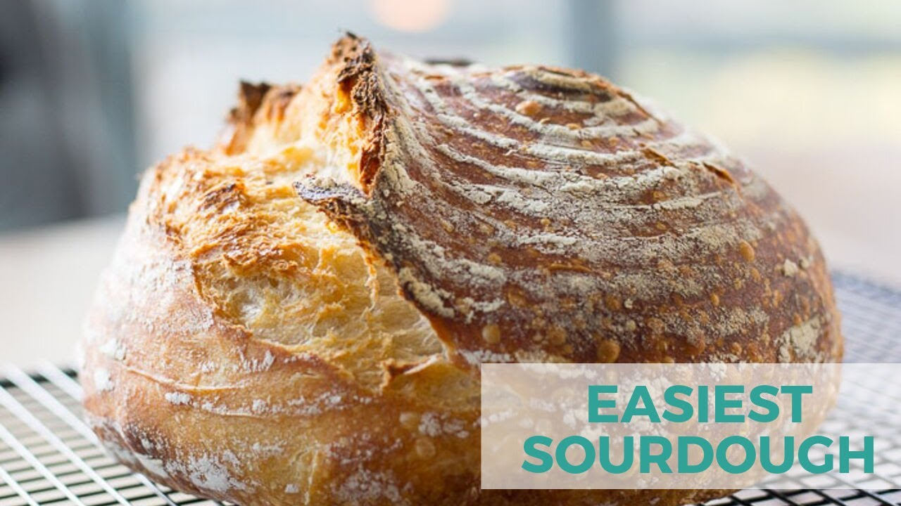 No Knead Sourdough Beginner Sourdough Bread Baker Bettie