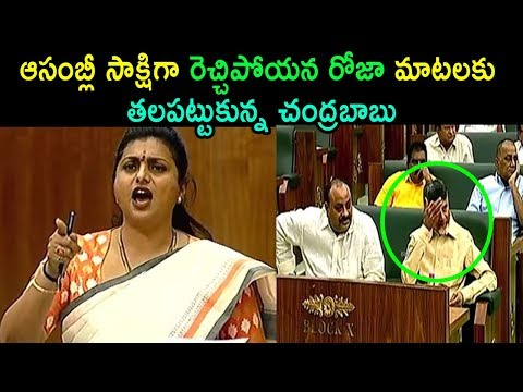 MLA Roja Comments On TDP Leaders At Assembly Sessions Meeting 2019 Amaravathi | Cinema Politics